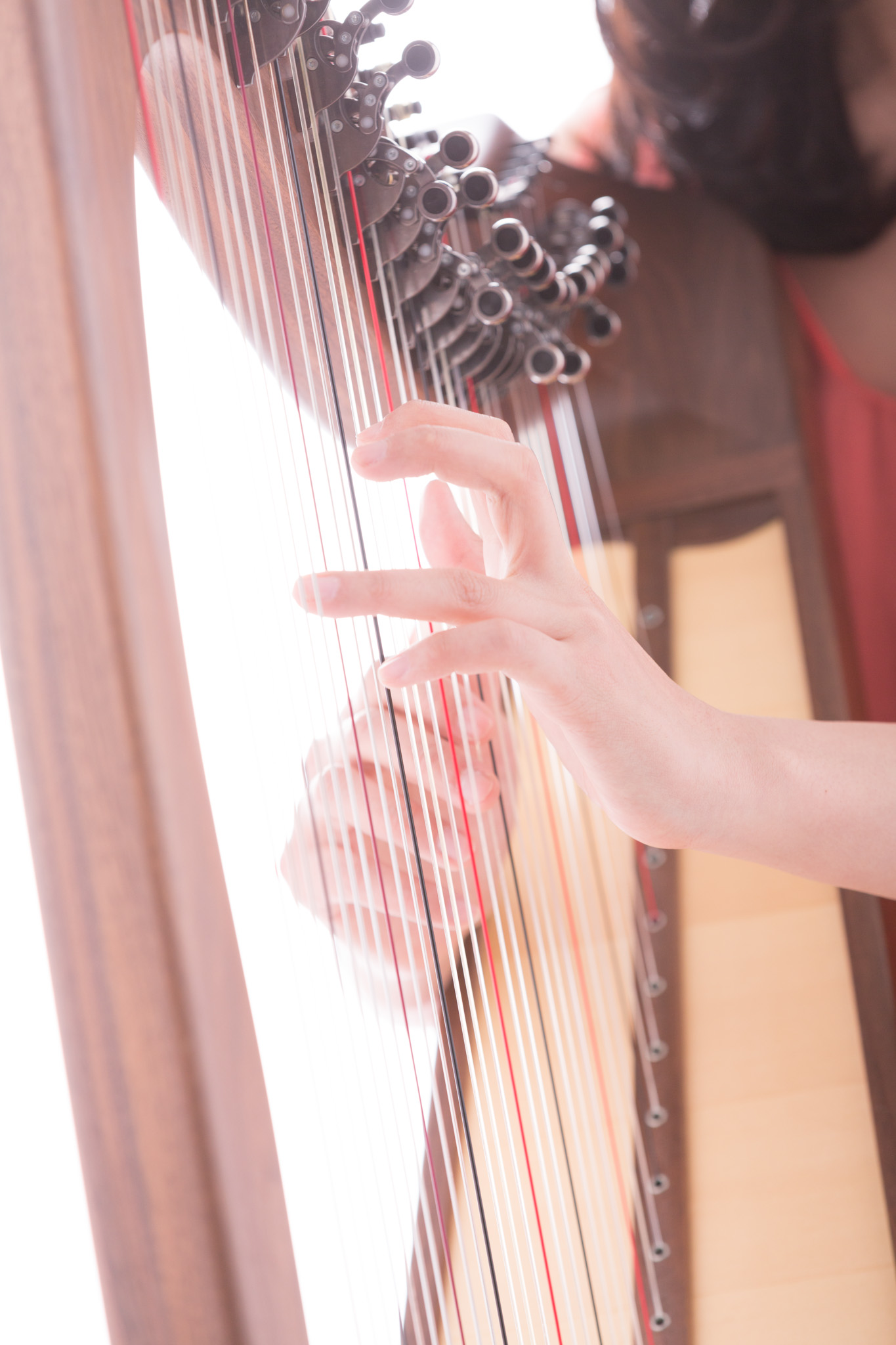harp picture.jpg